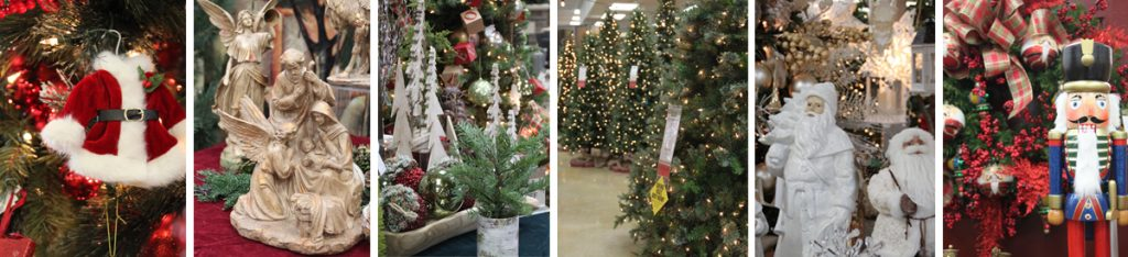 Christmas Trees at Seasonal Concepts