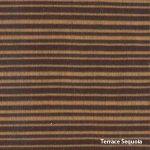 Terrace Sequoia