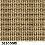 52900003